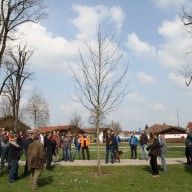 © Landratsamt Traunstein: Die Jungbaumpflege sichert eine gute Entwicklung des Baums.